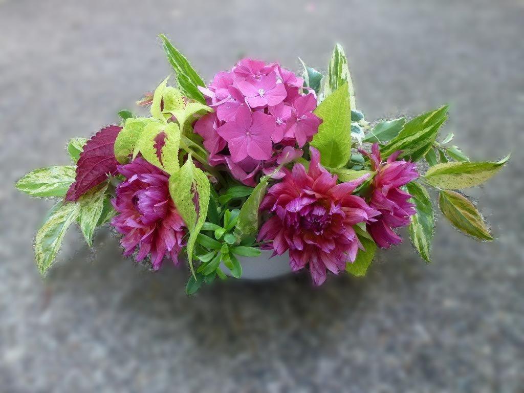 Photo of bouquets - Summer Centerpiece