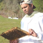 Ramesh Sagili with honeybees